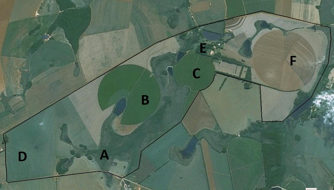 Figura 2 -  Disposição da sede da fazenda (E), da área de banhado (A) e dos pivôs de irrigação (F,C,B,D)